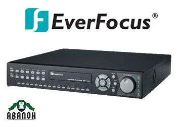Цифровой видеорегистратор ENDEAVOR-264x4 EverFocus