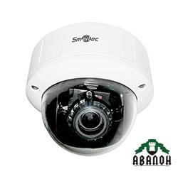 Обзор на купольную IP-камеру Smartec STC-IPM3551A